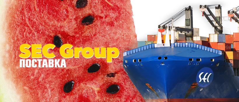 новая поставка | SEC Group